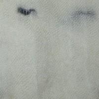 Blanc herminé