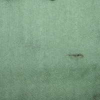 Vert herminé